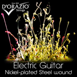 D'ORAZIO NICKEL PLATED MUTA PER CHITARRA ELETTRICA DISPONIBILE IN DIVERSE SCALATURE